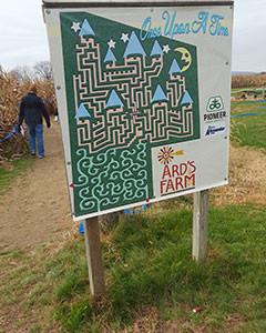 ards-maze