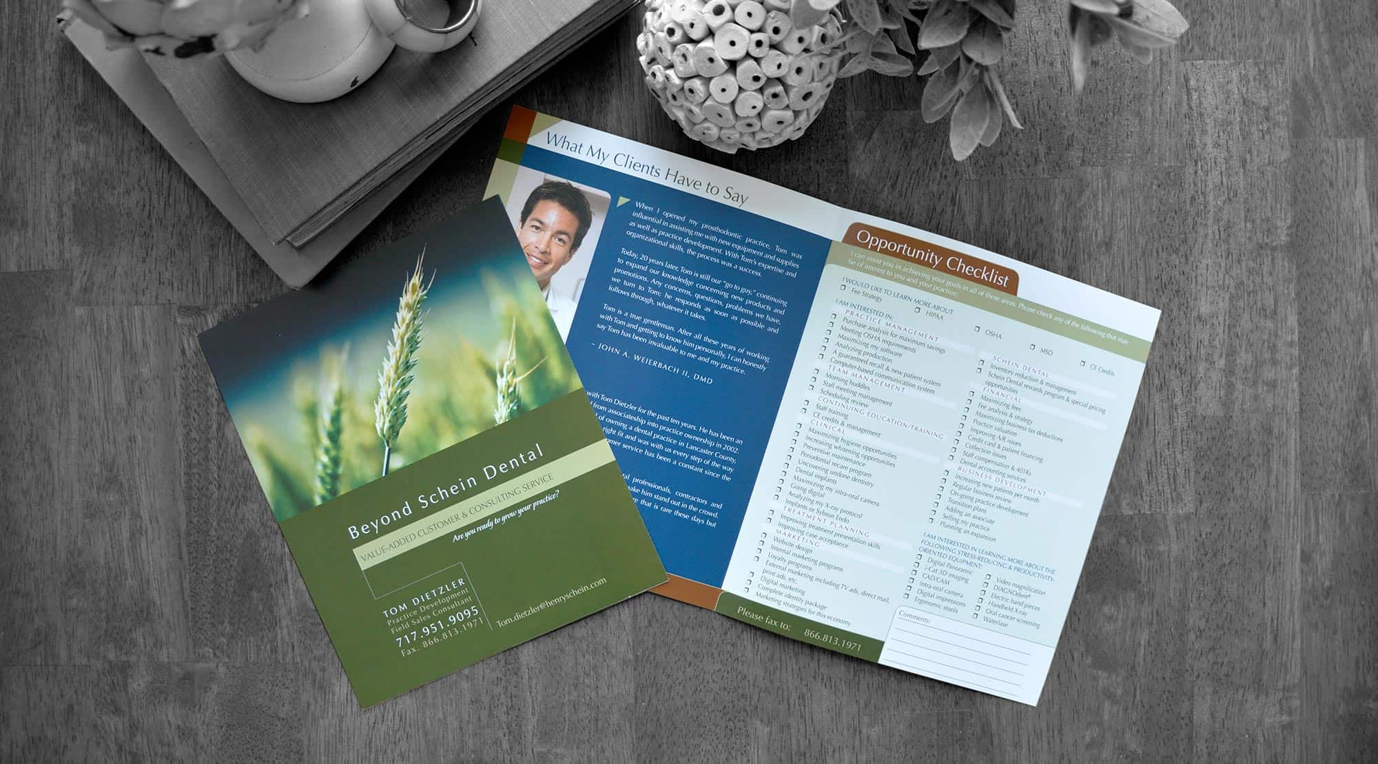 dental brochures beyond schein