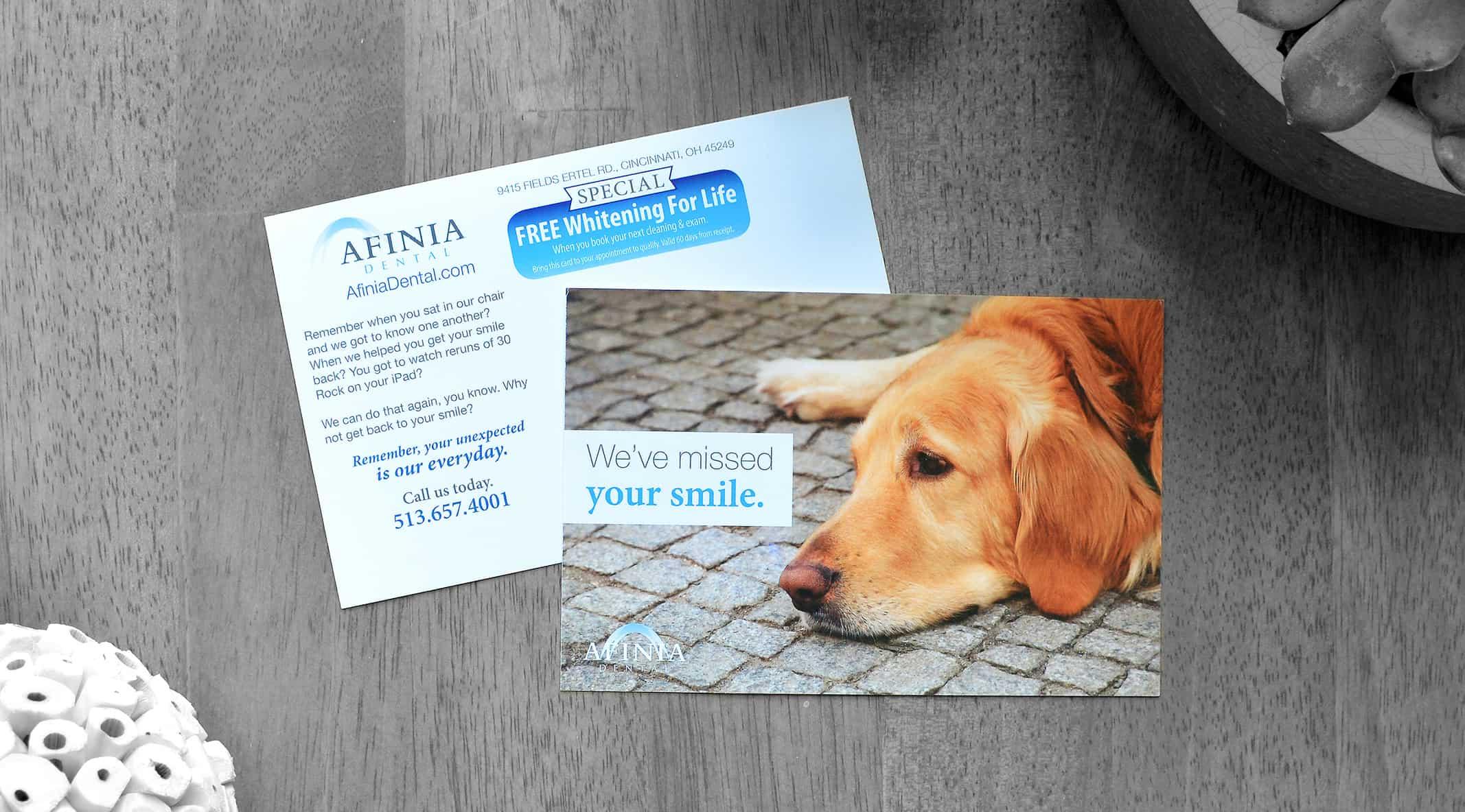 Afinia Reactivation Dog