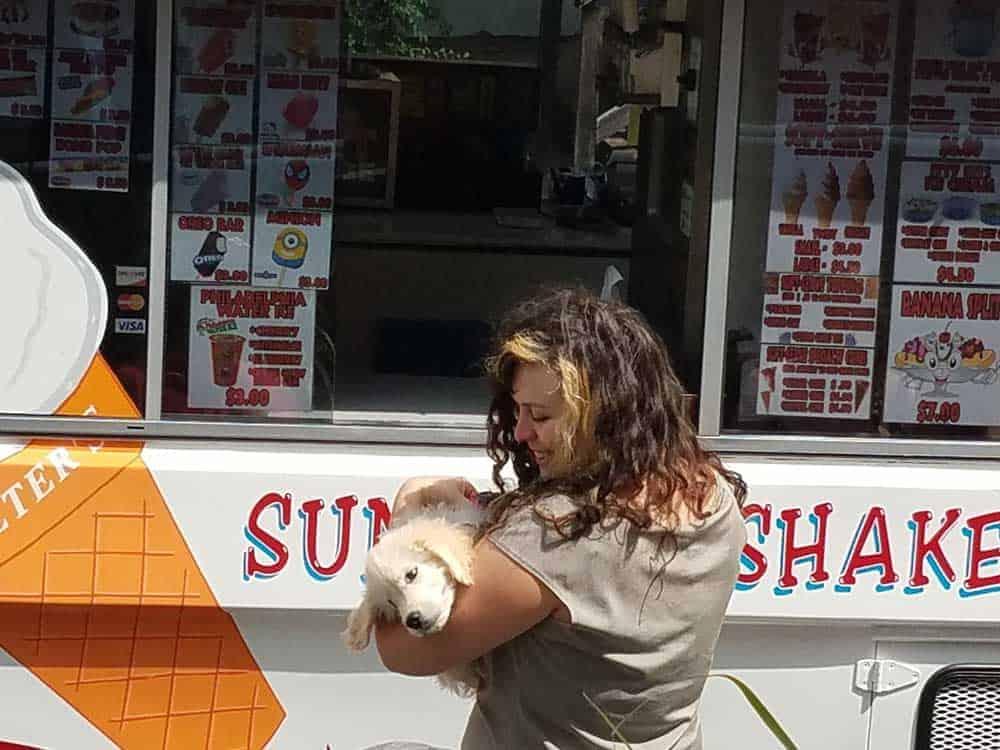 Puppy at ice cream truck