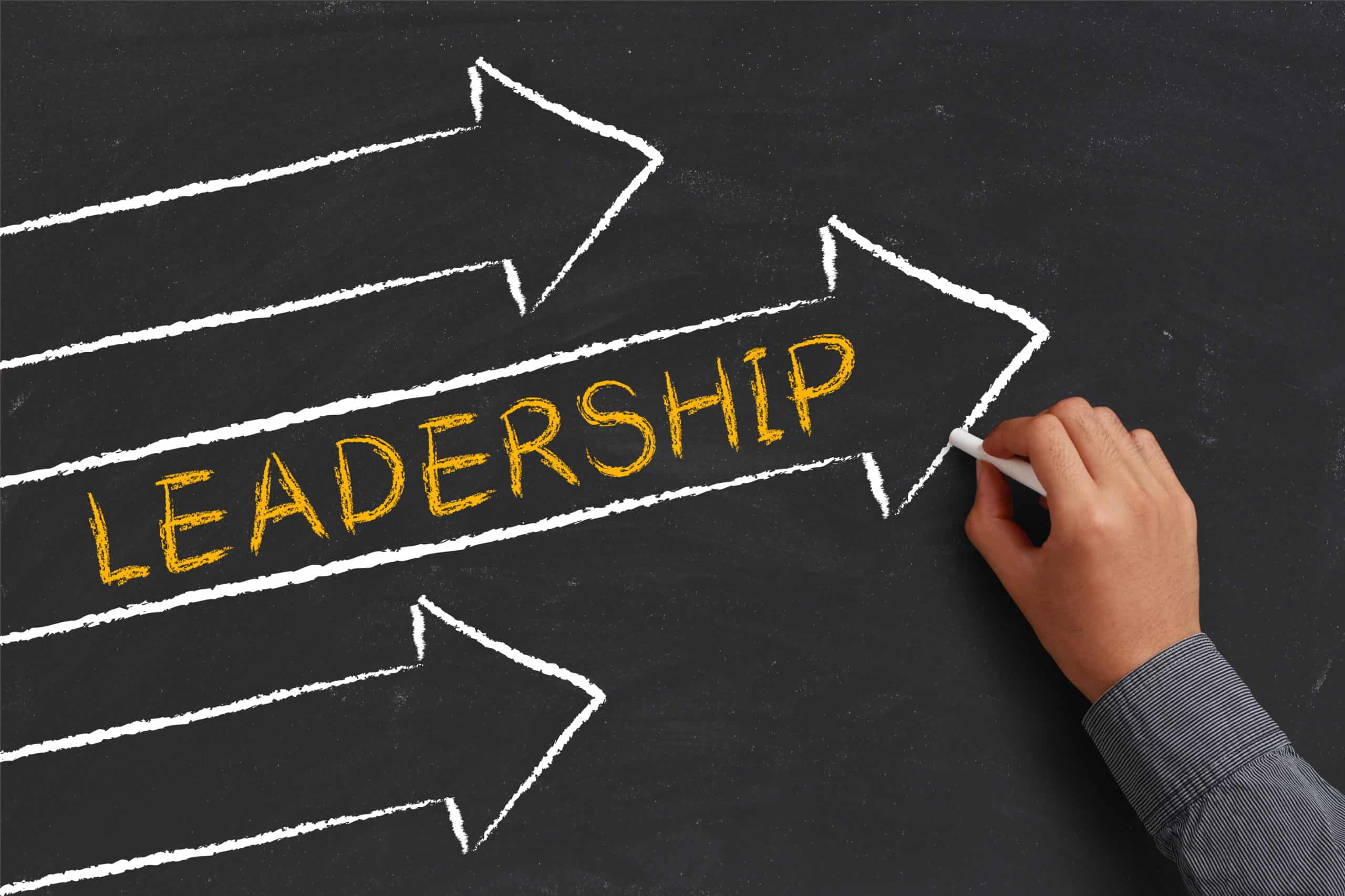 The Ultimate Guide to Leadership for Dentists